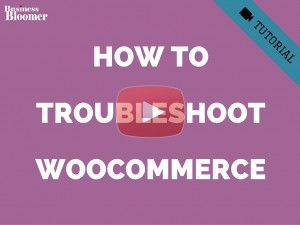 how-to-troubleshoot-woocommerce